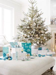 Elemis Christmas Tiverton Devon