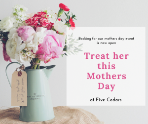 mothers day spa beauty waxing elemis facial massage retreat tiverton lashes devon